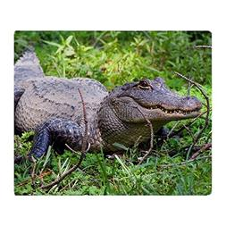 "CafePress - Alligator - Soft Fleece Throw Blanket, 50""x60"" S"