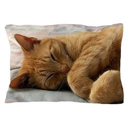 "CafePress - Sweet Dreams - Standard Size Pillow Case, 20""x30"