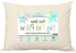 ORGANIC PILLOW FOR BIG KIDS NOT READY FOR ADULT SIZE. 18x24