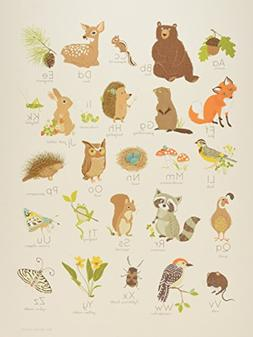 "Sea Urchin Studio Alphabet Poster, Woodland Forest, 12"" x 16"
