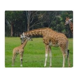 CafePress Baby Giraffe Throw Blanket