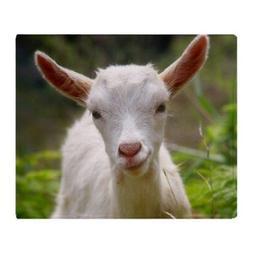 CafePress Baby Goat Throw Blanket