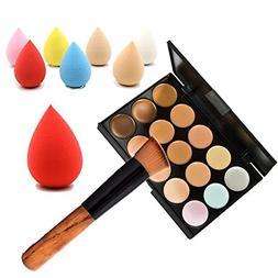 Embiofuels 15 Color Concealer Palette + Wooden Handle Brush