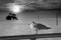 Coney Island Winter by Chris Lord Photo Art Print Poster 12x