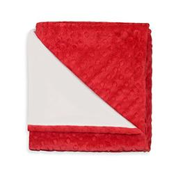 Princess Linens Deluxe Plush Receiving Blanket, Red Print, N