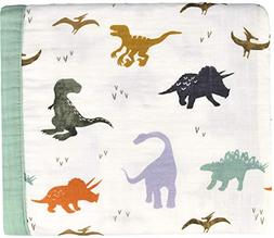 dinosaur toddler blanket