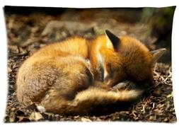 Fabulous Store Cutsom A Fox in Sound Dream Zippered Pillow C