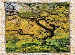 Japanese Decor Fleece Throw Blanket Shadows of a Large Maple