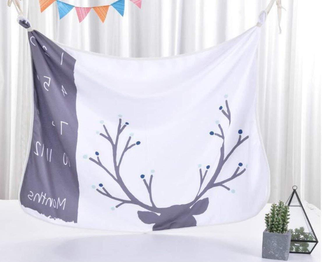 Monthly Baby Milestone Blanket, 1-12 Shower Boy or Girl