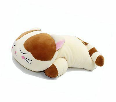 very soft cat big hugging