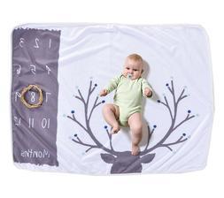 Monthly Baby Milestone Fleece Blanket, 1-12 Months, Baby Sho