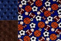 Personalized Minky Baby Blanket Sports Balls/Stroller Blanke