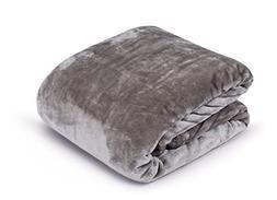 Internet's Best Plush Velvet Mink Throw Blanket | Gray| Thic